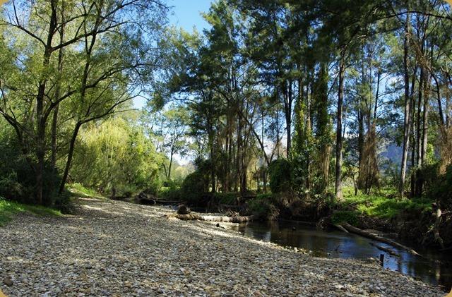 Creek behind Gloucester CP.