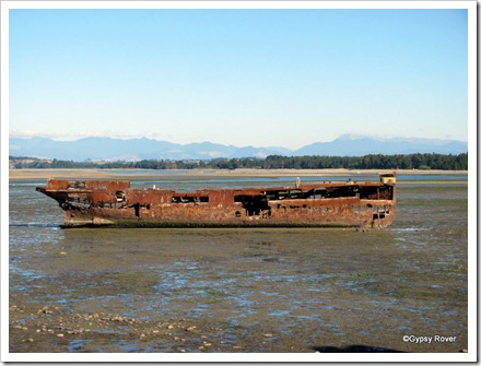 The Janie Seddon, examination boat and converted to a trawler. Built 1901,laid up 1950 beached for scrap 1955.