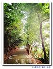 幸福生活彰化田中老家小豐收樹葡萄桑葚仙桃芭蕉川七波羅蜜~清水岩十八彎自由行