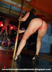 Sra Curtindo a Vida no pole