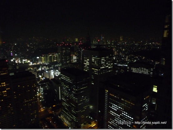 東京都廳-免費夜景2