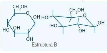 estructura B