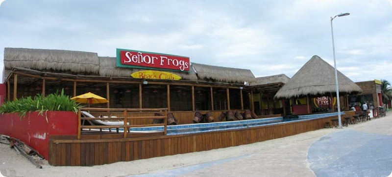 SenorFrogs