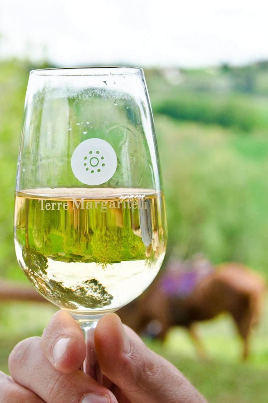 Terre Margaritelli wine
