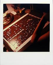 jamie livingston photo of the day September 11, 1995  ©hugh crawford