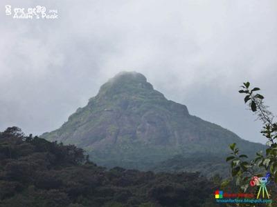 Adam's Peak 2014 by Ruwan Dileepa @ lessonforfree.blogspot (169)