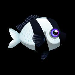 fish cloudydamsel 250x250 png cloudy damsel