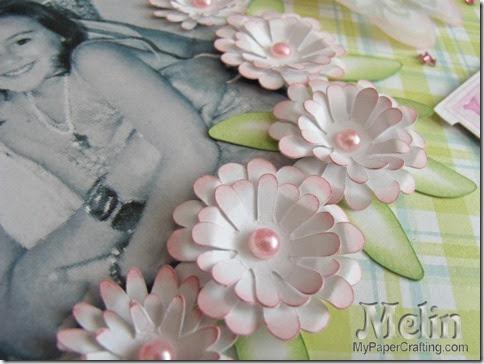 flowers closeup-480