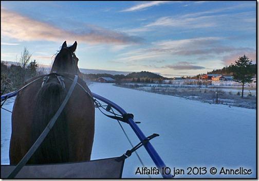 2013-jan10-Alf_01