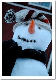 snö 8 dec 2011 027