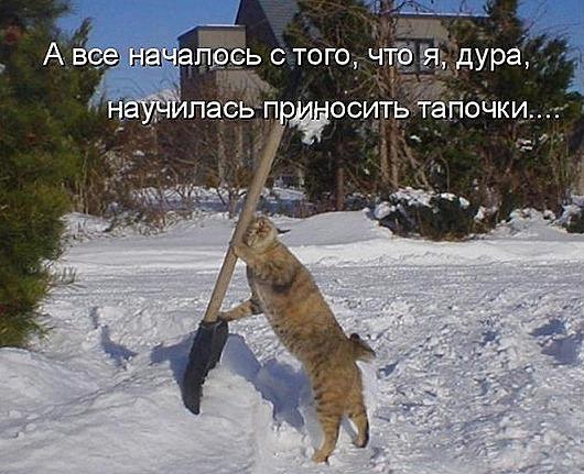 126084_207423