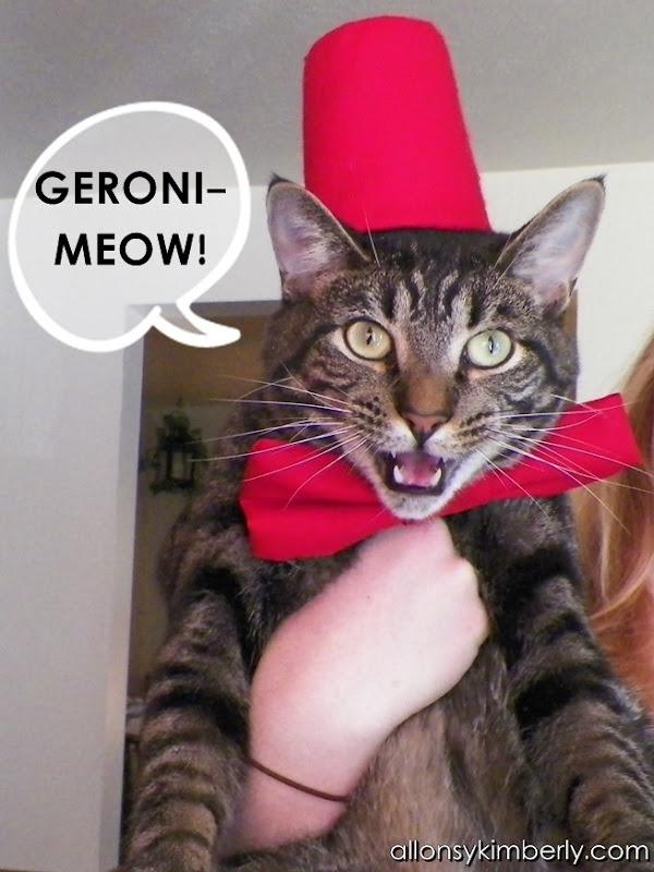 Doctor Who Cat Costume   allonsykimberly.com