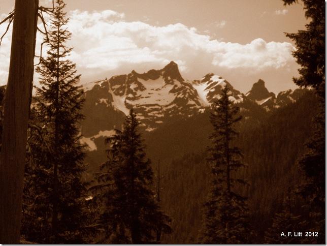 Mt Rainier National Park, Washington.  July 24, 2011.