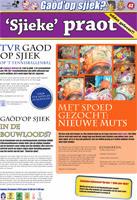 Pag 43 - Kwakkelkrant 2013 website.jpg