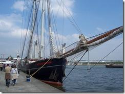 2013.06.10-030 Wylde Swan