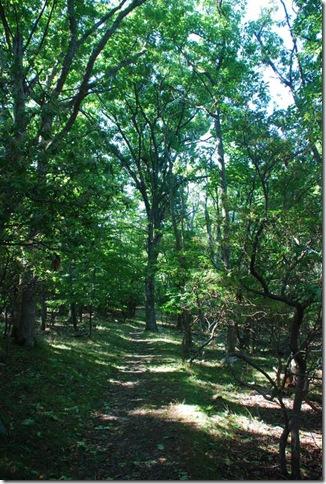 08-30-11 Shenandoah NP AT-HT 007