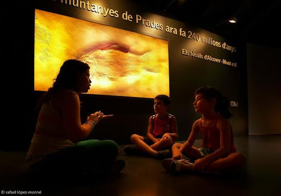 Museu d'Alcover, secció de Palentologia. Visita guiada per a famílies i escolars.Alcover, Alt Camp, Tarragona