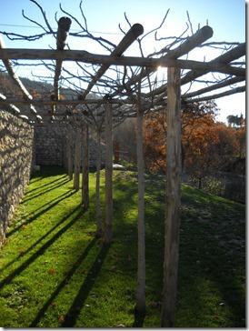 Assisi Volterra 125