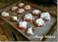 Many Waters Roasted Tomatoes before being cooked