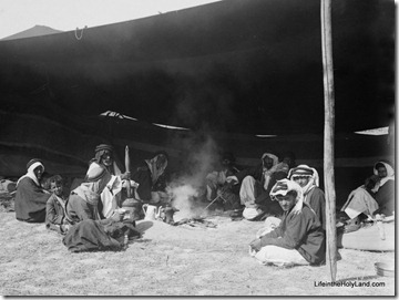 Bedouin hospitality, having coffee in sheikh&#39;s tent, mat05980
