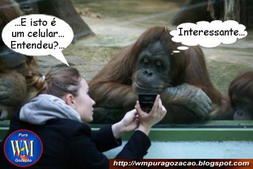 FLAGRANTE - LOIRA DANDO EXPLICAÇÕES - Isto é um celular, entendeu(int) - Interessante!