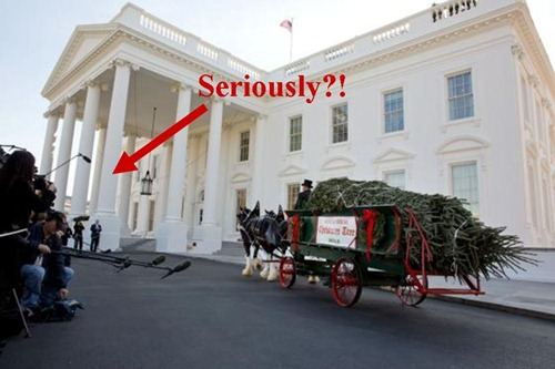 2012WhiteHouseChristmasTree-Seriously