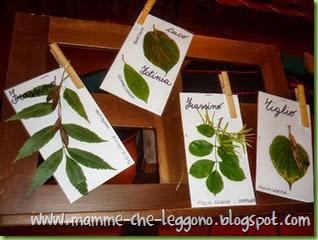 Mamme Che Leggono 2013 - 17 ottobre (13)