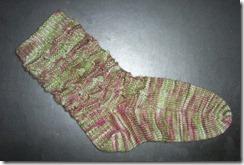 Rambutan Sock 1