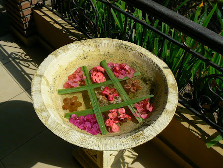 Bowl with flowers in Bali