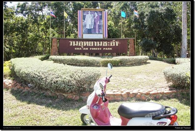 around bkk444