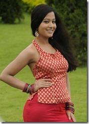 Priyudu Preetika Rao Hot Stills