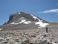 Wheeler Peak trail at 12,000' Photo