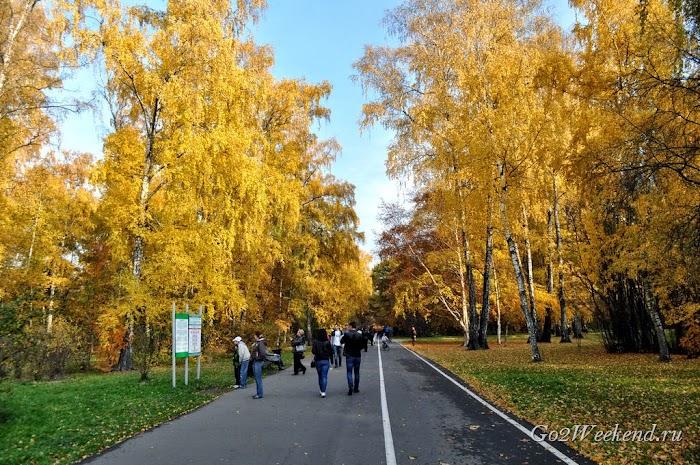 Botanicheskiy_sad_moskva