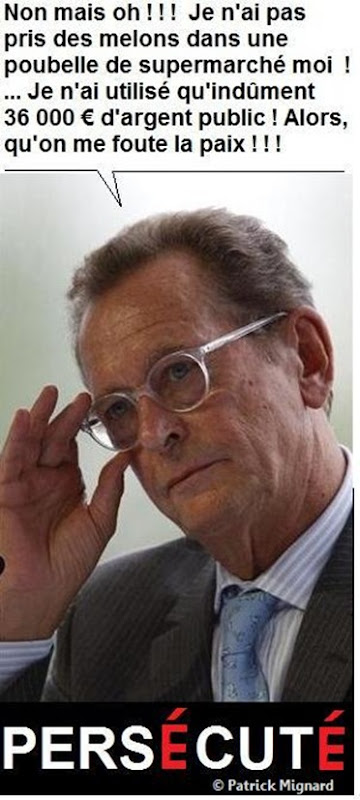 Baudis Mignard