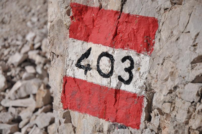 DSC 2567