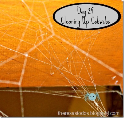 Day 29 Cleaning Up Cobwebs