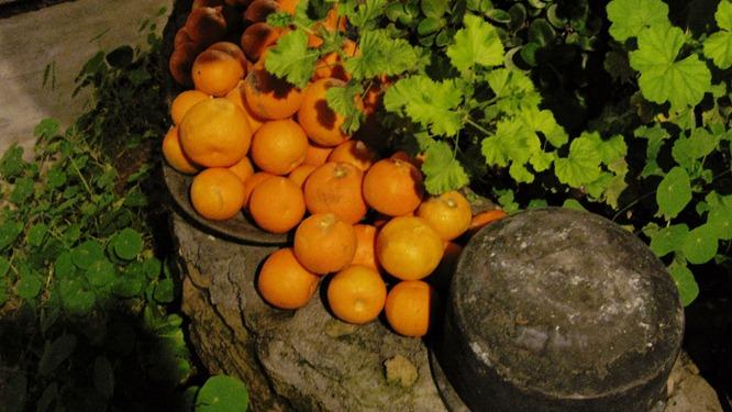 Orange pile