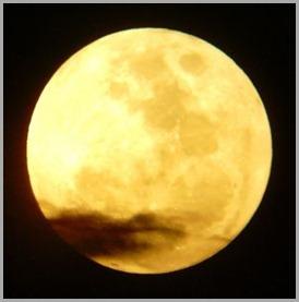 209140_yellow_moon - copia