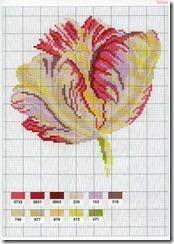 flor-ponto-cruz-grafico-2