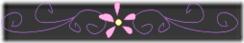 Banner (126)