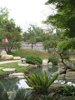 There is a small Japanese garden on the grounds that was donated by San Antonio's sister city in Japan, Kumamoto. They actually sent designers and gardeners from Japan to install it.
