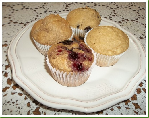 byudancesport2012 muffins 095