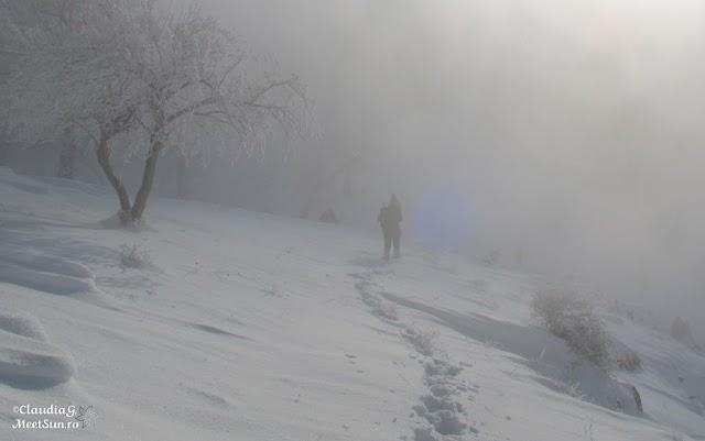 Macin-iarna-41_rw.jpg