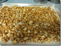 dark chocolate salted caramel popcorn - The Backyard Farmwife