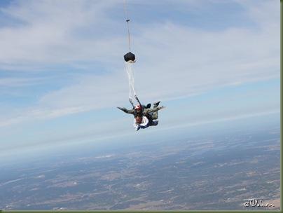 skydive 137
