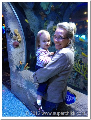Aquarium1