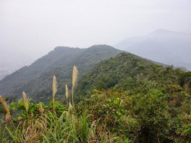 2013_0127 白賓山、真笠山、笠頂山 O走_022