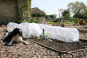 Easy Poly Tunnel - with drawstring for closing ends