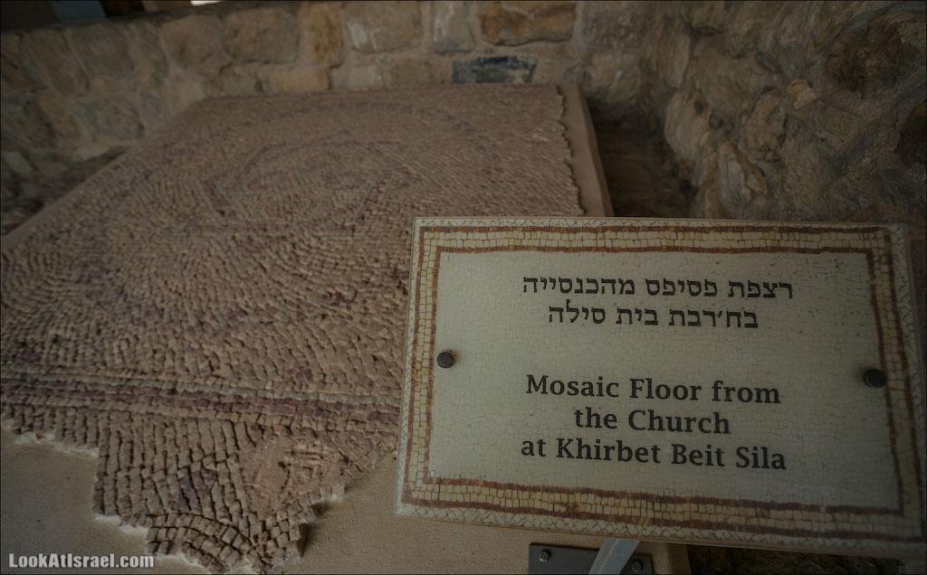 Мозаики от «Доброго самаритянина» (israel  путешествия иудея и самария и интересно и полезно выставки музеи фестивали  20130215 good samaritan mosaic 013 5D3 8340)