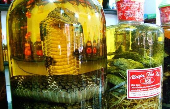 ruou_thuoc_snake_wine